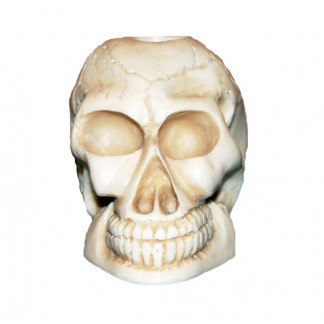 White Skull Candle Holder