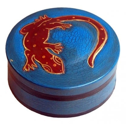 Blue box with Gecko on Top